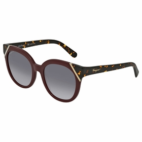 Salvatore Ferragamo SF836S 520 53    Sunglasses