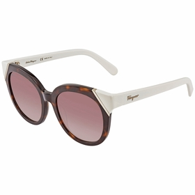 Salvatore Ferragamo SF836S21553 SF836S Ladies  Sunglasses