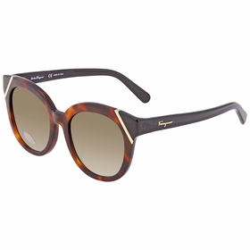 Salvatore Ferragamo SF836SA23253    Sunglasses