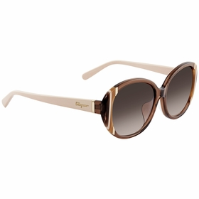 Ferragamo SF842SA2105816  Ladies  Sunglasses