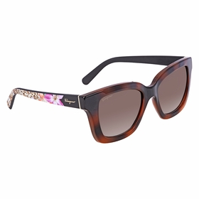 Salvatore Ferragamo SF858S 214 53    Sunglasses