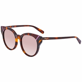 Salvatore Ferragamo SF883SA 238 53 SF883SA   Sunglasses