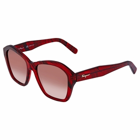 Salvatore Ferragamo SF894S 645 55 SF894S   Sunglasses