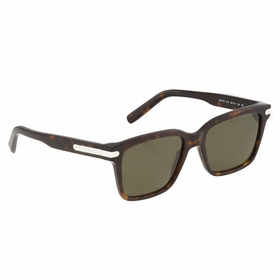 Ferragamo SF917S 38781 214 55    Sunglasses