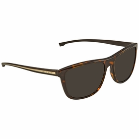 Hugo Boss BOSS 0874/S P0I 57    Sunglasses
