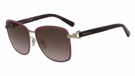 Longchamp LO103S 716 58  Ladies  Sunglasses
