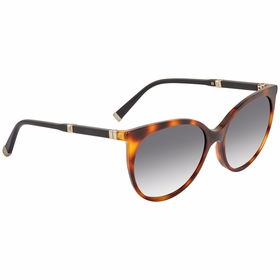 Max Mara Mm Design Iii 0HCN 00 55  Ladies  Sunglasses