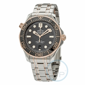 Omega 210.20.42.20.01.001 Seamaster Mens Automatic Watch