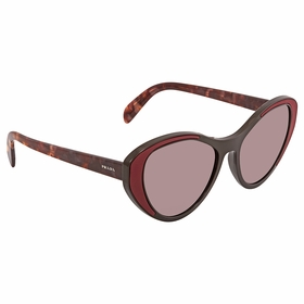 Prada PR 14US YEO6X1 55  Ladies  Sunglasses