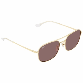 Ray Ban 0RB3613D001/7558  Mens  Sunglasses