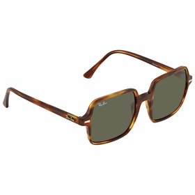 Ray Ban RB1973 954/31 53    Sunglasses