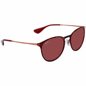 Ray Ban RB3539 913375 54 Erika   Sunglasses