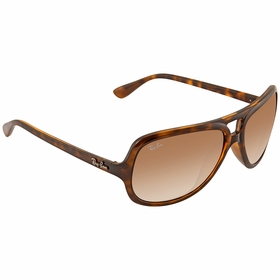 Ray Ban RB4162 71051 59 RB4162   Sunglasses