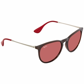 Ray Ban RB4171 6339D0 54 Erika Color Mix Unisex  Sunglasses