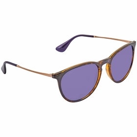 Ray Ban RB4171 639276 54 Erika Ladies  Sunglasses