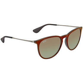 Ray Ban RB41716316E854 Erika Ladies  Sunglasses