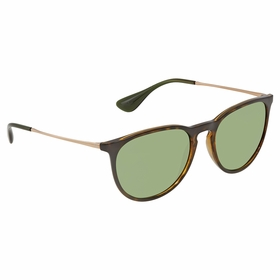 Ray Ban RB41716393254 Erika Color Mix Ladies  Sunglasses