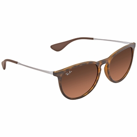 Ray Ban RB4171F 865/13 54-18 Erika Classic Ladies  Sunglasses
