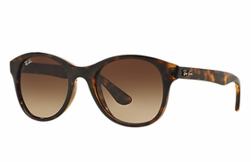 Ray Ban RB4203 710/13 51  Unisex  Sunglasses