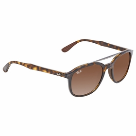 Ray Ban RB4290 710/13 53  Unisex  Sunglasses
