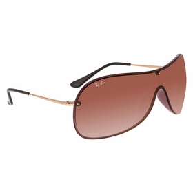 Ray Ban RB441164240T41 RB4411   Sunglasses