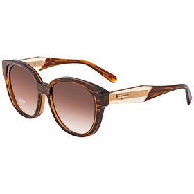 Salvatore Ferragamo SF895SA29656 SF895SA Ladies  Sunglasses