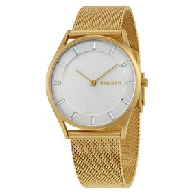Skagen SKW2377 Holst Ladies Quartz Watch