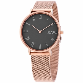 Skagen SKW2813 Hald Ladies Quartz Watch