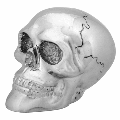 YTC, Chrome Skull Shift Knob