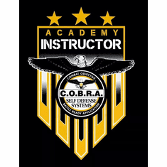 2 Day Custom  Executive Coaching for COBRA Owners