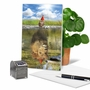 Artful Birthday Printed Greeting Card From NobleWorksCards.com - Aspirations - Kitten image 5