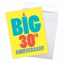 Hilarious Milestone Anniversary Jumbo Printed Greeting Card From NobleWorksCards.com - Big 30 image 3