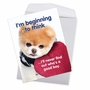 Hilarious Birthday Jumbo Printed Greeting Card By Spotlight Licensing From NobleWorksCards.com - Boo's A Good Boy image 2