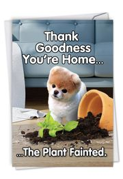 Boo's Plant Fainted Card