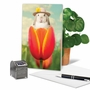 Hilarious Easter Printed Card By Michael Quackenbush From NobleWorksCards.com - Bunny Tulip image 5