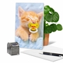 Stylish Birthday Printed Card From NobleWorksCards.com - Cat Pacifiers - Kitty image 5