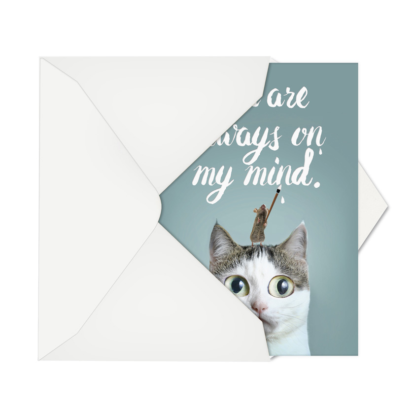 Cat sent greetings stylish miss you card stylish miss you card from nobleworkscards cat sent greetings image 2 m4hsunfo