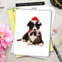 Stylish Christmas Jumbo Greeting Card by Warren Photographic from NobleWorksCards.com - Copy Cats image 6