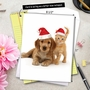 Creative Christmas Jumbo Printed Card by Warren Photographic from NobleWorksCards.com - Copy Cats image 6
