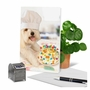 Hysterical Birthday Printed Card By Michael Quackenbush From NobleWorksCards.com - Dog Chef image 6