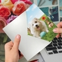 Hilarious Birthday Printed Greeting Card By Michael Quackenbush From NobleWorksCards.com - Dog Play image 3