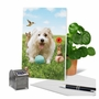 Hilarious Birthday Printed Greeting Card By Michael Quackenbush From NobleWorksCards.com - Dog Play image 6