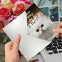 Hilarious Birthday Printed Greeting Card From NobleWorksCards.com - Fluffy Kitten image 3