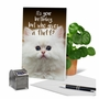 Hilarious Birthday Printed Greeting Card From NobleWorksCards.com - Fluffy Kitten image 6