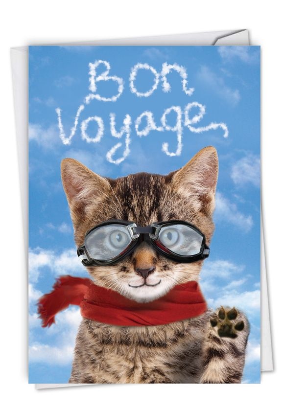 goodbye cat  funny bon voyage paper card