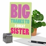 Humorous Sister Thank You Card From NobleWorksCards.com - Great Sister image 6