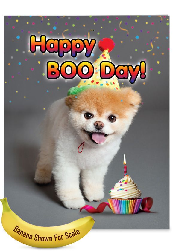 happy booday funny birthday extra large paper card
