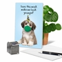 Funny Birthday Paper Card From NobleWorksCards.com - Masked Dogs - Shih Tzu image 5