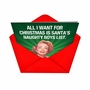 Hysterical Christmas Paper Greeting Card from NobleWorksCards.com - Naughty Boy List image 2