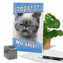 Funny New Year Card From NobleWorksCards.com - No Sh*t - 2020 image 6